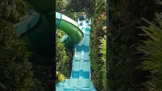 Adventure cove waterpark in SG