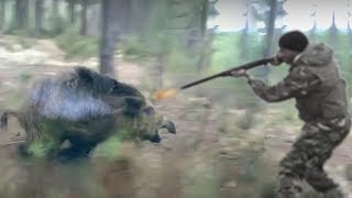 TOP 10 ANIMALS ATTACK HUNTER  Buffalo, Lion, Leopard, Bear, Puma