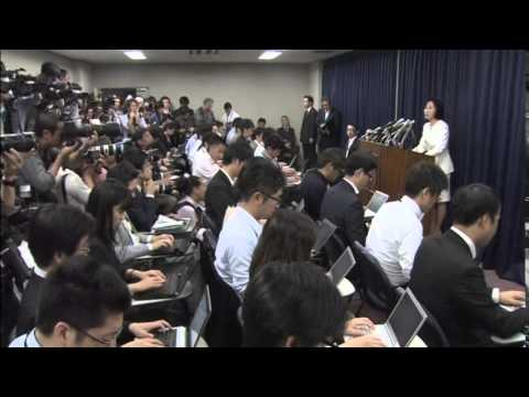 1108 v4 - JAPAN-POLITICS UPDATE