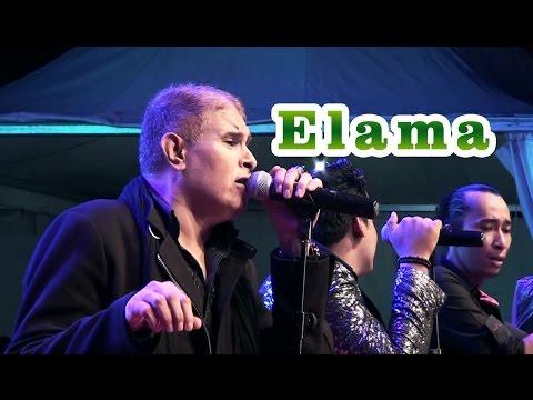 Elama cover Balasyik Jember live Binuang