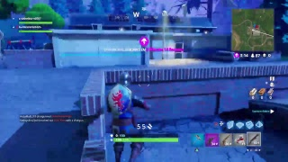 Fortnite: Squad with Friends