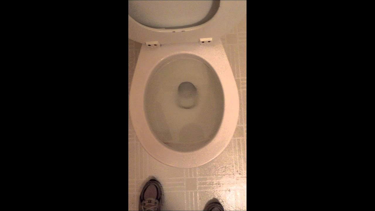 how to use american toilet