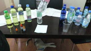 14 Brands of Bottled Water Test for pH Part 1 Philippines