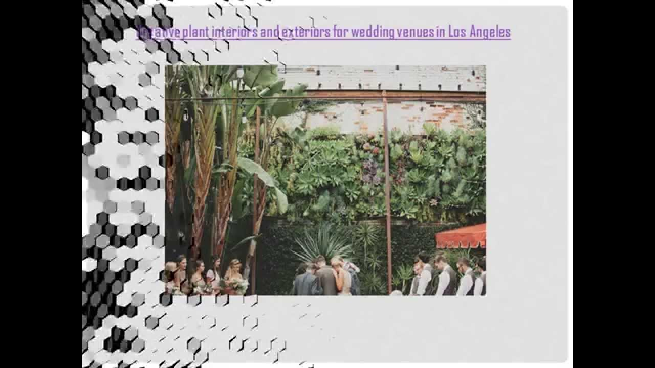 Affordable Wedding Venues In Los Angeles With Eco Friendly Creative