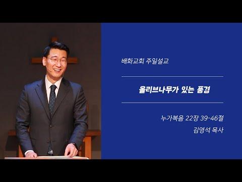 20200112 올리브나무가 있는 풍경(눅 22장 39-46절) / 김영석 목사