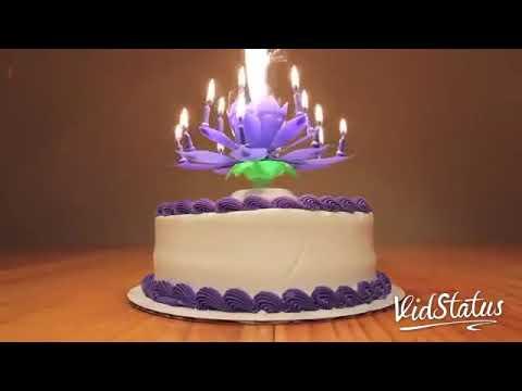 Happy Birthday My Janu Youtube