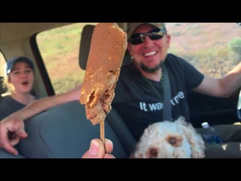 Download Youtube: You wont believe what was in the tailpipe.