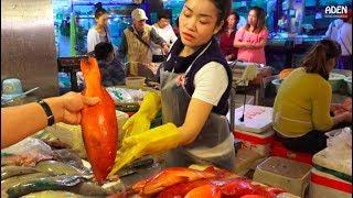 Sanya Fish Market - China - Hainan Island