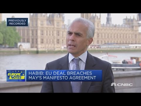 EU is making a free trade deal difficult, Brexit Party candidate says | Squawk Box Europe
