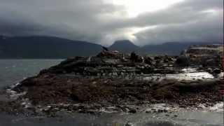 Beagle Channel - Ushuaia, Patagonia