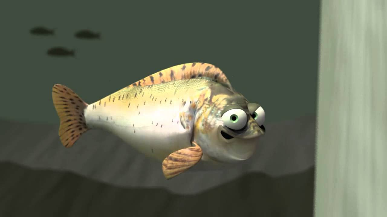 What did the fish say when he ran into the wall youtube for Fish therapy near me