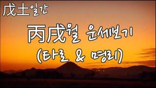 [타로와 명리] 무토일간 병술월(10월) + 타로점 (운의 흐름, 금전, 연애)