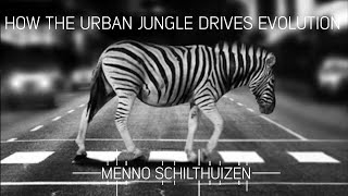 How the urban jungle drives evolution with Menno Schilthuizen