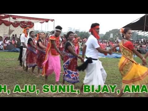 BISWA ADIVASI DIWAS 2017,