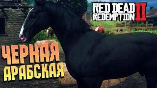 Наскреб на САМУЮ ДОРОГУЮ лошадь в игре, Спасение Джека➤RED DEAD REDEMPTION 2 #30