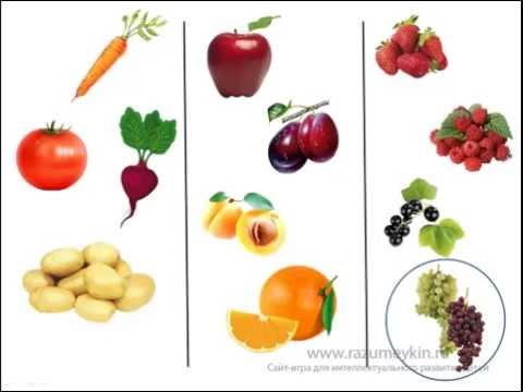 Овощи, фрукты и ягоды Сайт-игра Разумейкин