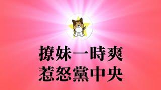 """波特王撩蔡英文""""惹大祸"""",是大选政治操作吗?papi酱配不上波特王,中国也配不上TW"""