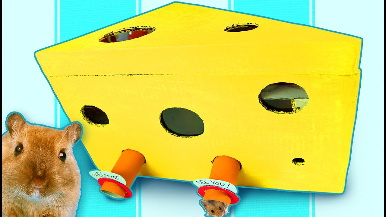 DIY Hamster Maze - Cardboard House for Hamster, Rat ...
