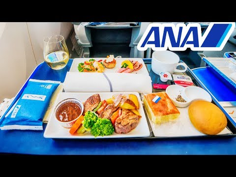 TRIP REPORT | ANA (BUSINESS CLASS) | Boeing 787-8 | Seoul - Tokyo | All Nippon Airways 全日空 レビュー