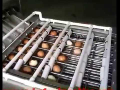 Máy bóc vỏ trứng gà, máy bóc vỏ trứng vịt ; Máy lột vỏ trứng gà