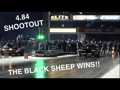 THE BLACK SHEEPS