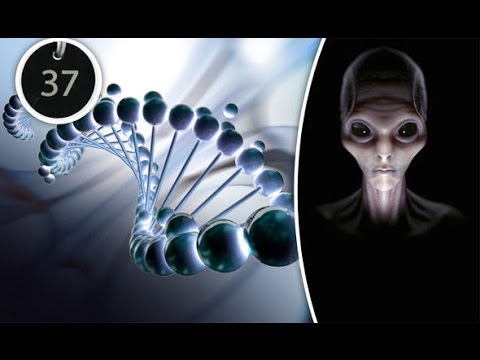 Aliens Created Our Genetic Code and Signed it with the Number 37