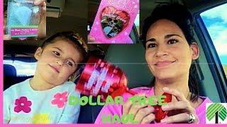 Dollar Tree Haul   New Finds   01292019
