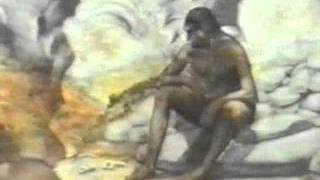 05.Происхождение человека.avi
