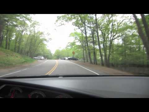 The Rock Forest: Sunday Driver- Blue Hills Reservation