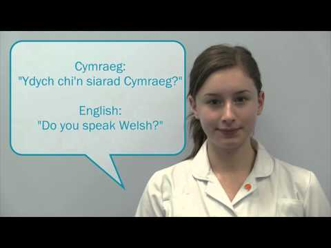 Basic Welsh Phrases