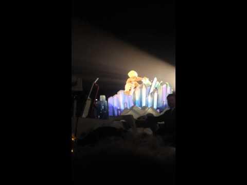 Lady Gaga brings brave fan on stage (2014)