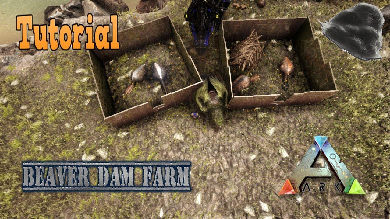 """ARK: Survival Evolved - The Secret of """"Castoroides"""" GIANT ...   Ark Beaver Dam"""
