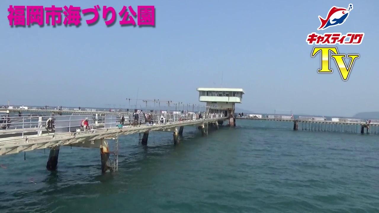 市 釣り 公園 海 福岡