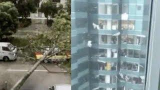 Hong Kong super typhoon Mangkhut in Hong Kong , typhoon Omgong Hong Kong, 香港超强台风, 颱風
