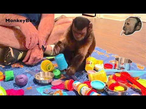 Monkey Play Doh Party
