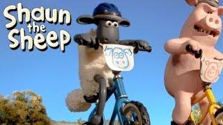 Shaun het Schaap - BMX