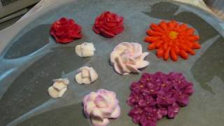 Hydrangeas, Gerber Daisies, and air drying the flowers