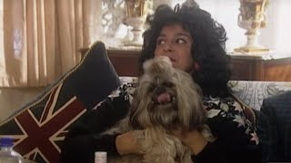 The Coopers: Pet Dog sketch - Goodness Gracious Me - BBC Comedy