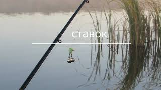 рибалка у боголюбах на карпа рибалка на карася фідером убійца карася