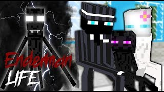 Monster School : Enderman Life - Best Minecraft Animation