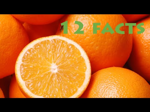 12 Facts About Oranges!