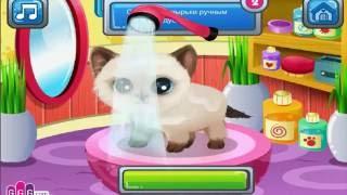 Funny Cartoon Game Kittens and Puppies - Мультик Игра Котята И Щенята #амням #omnom