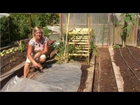 Maintaining Your Garden : How to Treat Garden Soil for a Fungal Infection