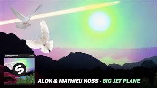 Baixar Alok & Mathieu Koss - Big Jet Plane - FG Remix - DJ Flavio Guanabara