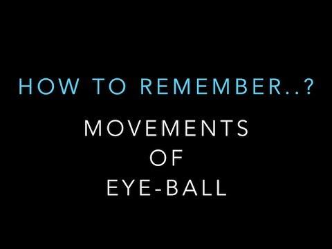 MOVEMENTS OF EYE-BALL