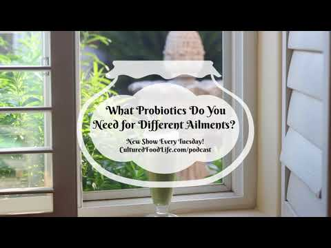 Podcast Episode 16:  What Probiotics Do You Need for Different Ailments