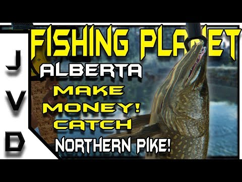 Fishing Planet Gameplay | Make Money Catch Northern Pike | White Moose Lake in Alberta, Canada