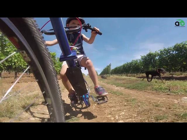Aventuri pe bicicleta : cu Alex prin Ghioroc