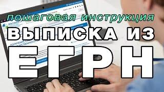 как заказать выписку из Базы ЕГРН Росреестра на сайте adres-24.ru