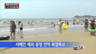 폭염 피해 바다로...태안 만리포해수욕장 / YTN